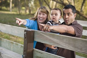 Happy Mixed Race Family Playing In T