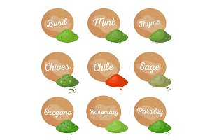 Basil Mint Spices Collection Vector