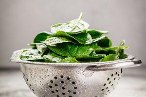Fresh organic spinach leaves in meta