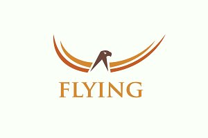 Flying Logo