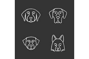 Dogs breeds chalk icons set
