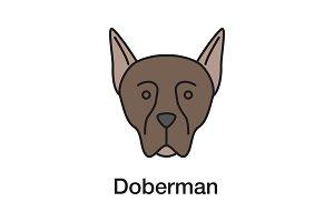 Doberman Pinscher color icon