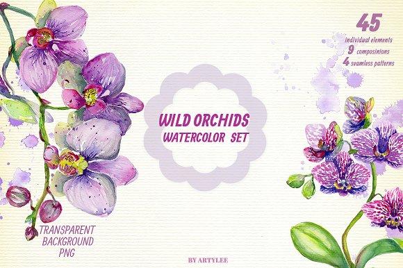 Wild Orchids Watercolor Set