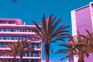 Palms and hotels