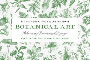 147 Botanical Illustrations Pack