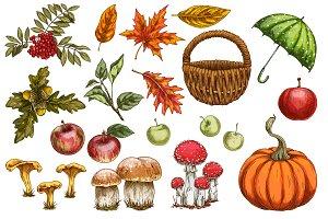 Autumn. New season