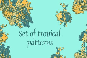 A set of patterns of tropical fish