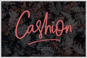 Cashion Script (30% OFF)