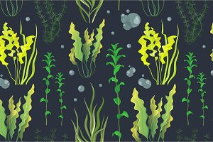 underwater green sea seaweeds