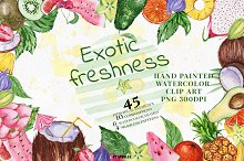 Exotic freshness Watercolor Set