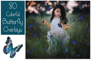 80 Colorful Butterfly Overlays