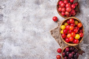 Various type of cherry-plum in