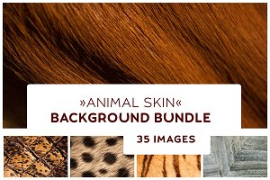 35 Animal Skin Background Texture