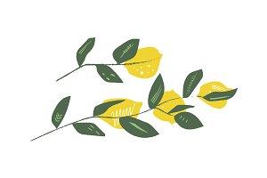 Vector lemons print