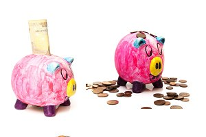 collage of pigs with money
