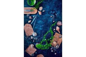 Sea life and marine biology