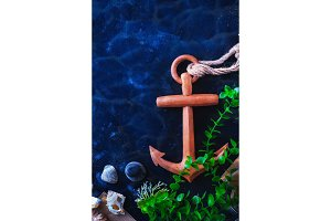 Anchor and seaweeds in an underwater