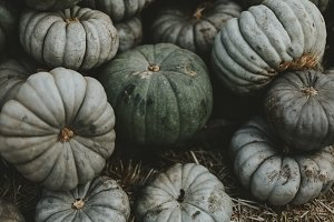 Green Pumpkin Patch