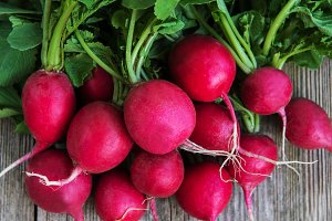 Fresh purple radish