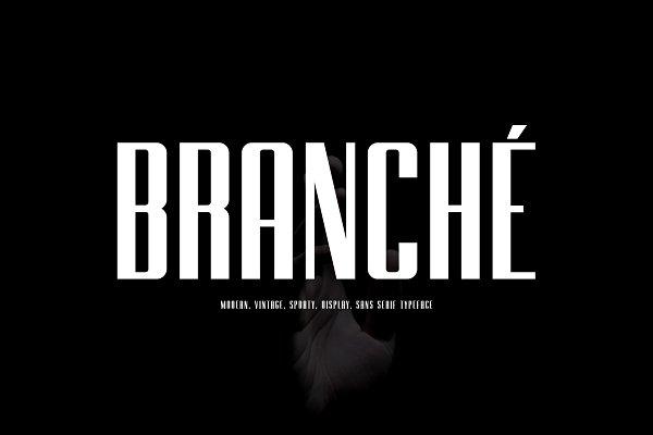Fonts: TypoBureau Studio - BRANCHE - Display Font