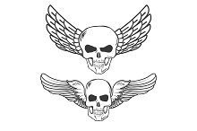 Winged Skulls isolated