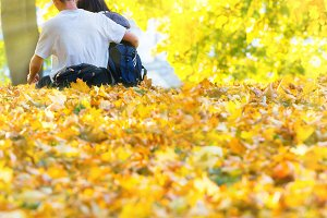 Young happy couple in the autumn par
