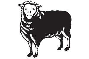 Sheep Side View Woodcut
