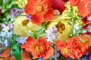 Bright bouquet with forget-me-nots