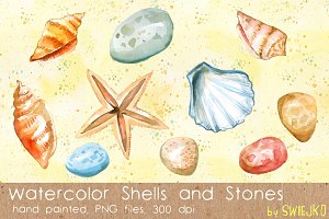 Shells, Sea Treasures