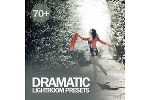 Dramatic Lightroom Presets