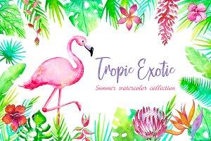 Tropic Exotic