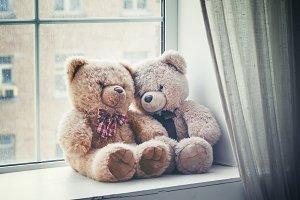 Brown teddy bears on the window on a