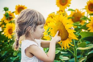 child in the field of sunflowers