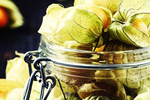 Dry physalis, dark background, selec