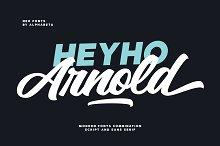 Arnold Script