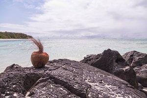 coconut paradise beach in Deer Islan