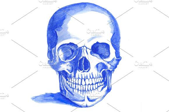 Painted Skull in Illustrations
