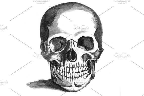 Painted Skull in Illustrations - product preview 1