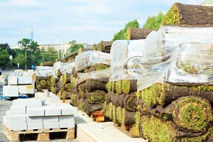 Rolls of lawn grass