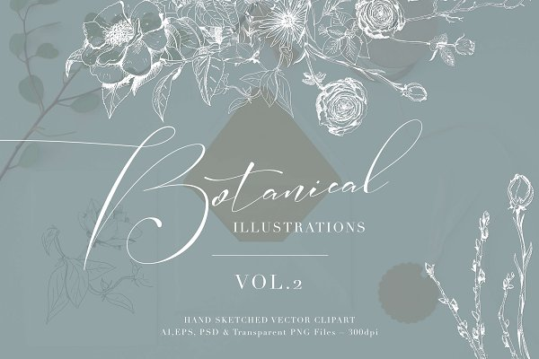 Illustrations and Illustration Products: The Autumn Rabbit Ltd - Botanical Illustrations Vol.2