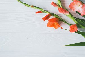 Gladioluses flowers bouquet on wood