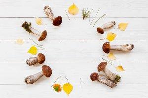 Wreath of autumn mushrooms
