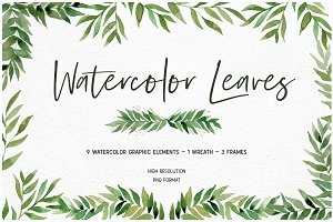 Watercolor Leaf Collection