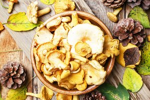 Yellow chanterelle in wooden bowl, r