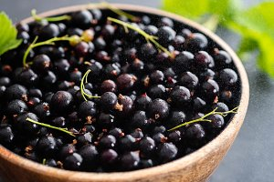 Blackcurrant berries with leaves