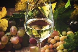 Dry white wine in glass, rustic stil