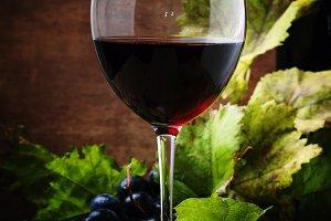 Spanish red dry wine from rioja vine
