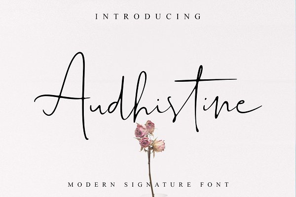 Script Fonts: Lettersiro - Audhistine Font