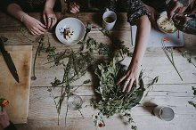 Cooking with herbs by  in Food & Drink