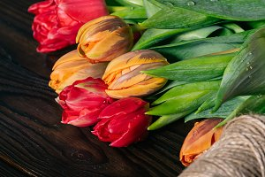 close up view of bouquet of tulips a